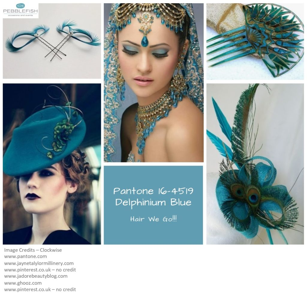PIcture Montage for Pantone Colour Delphinium Blue