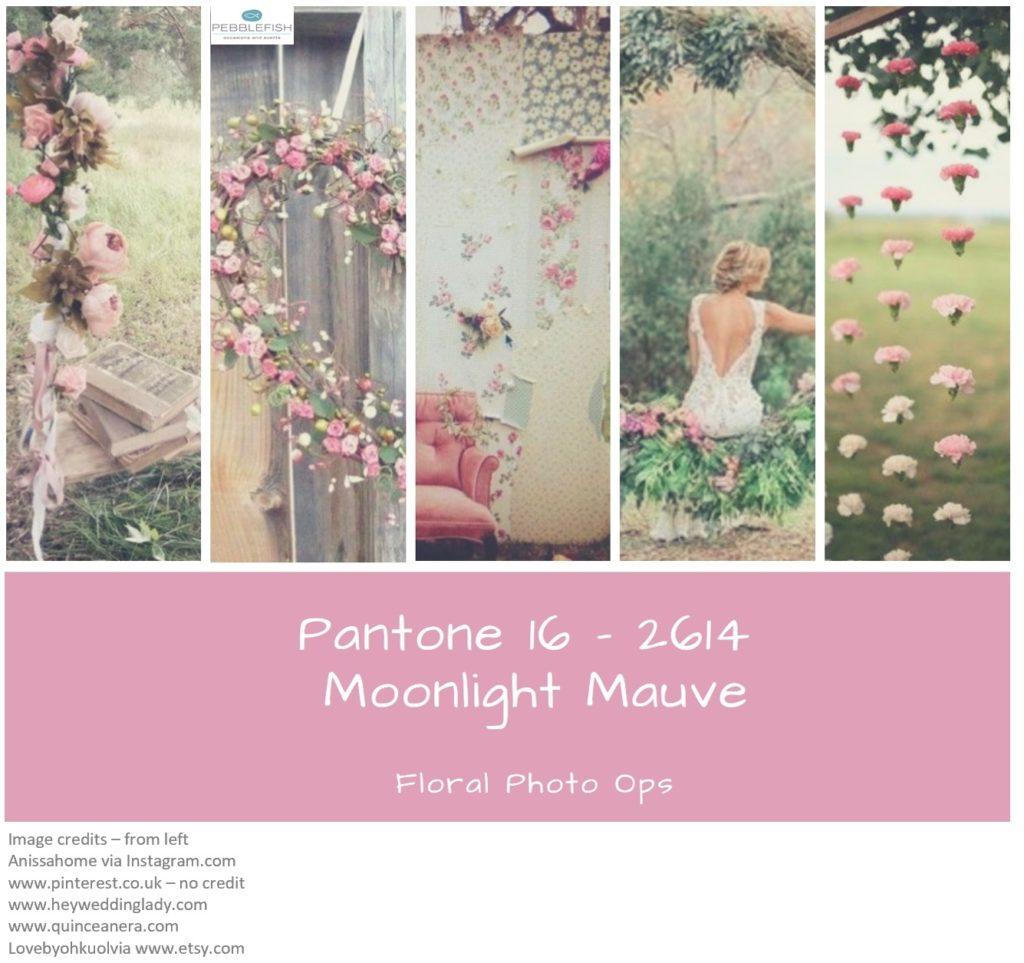 Picture montage for pantone colour moonlight mauve