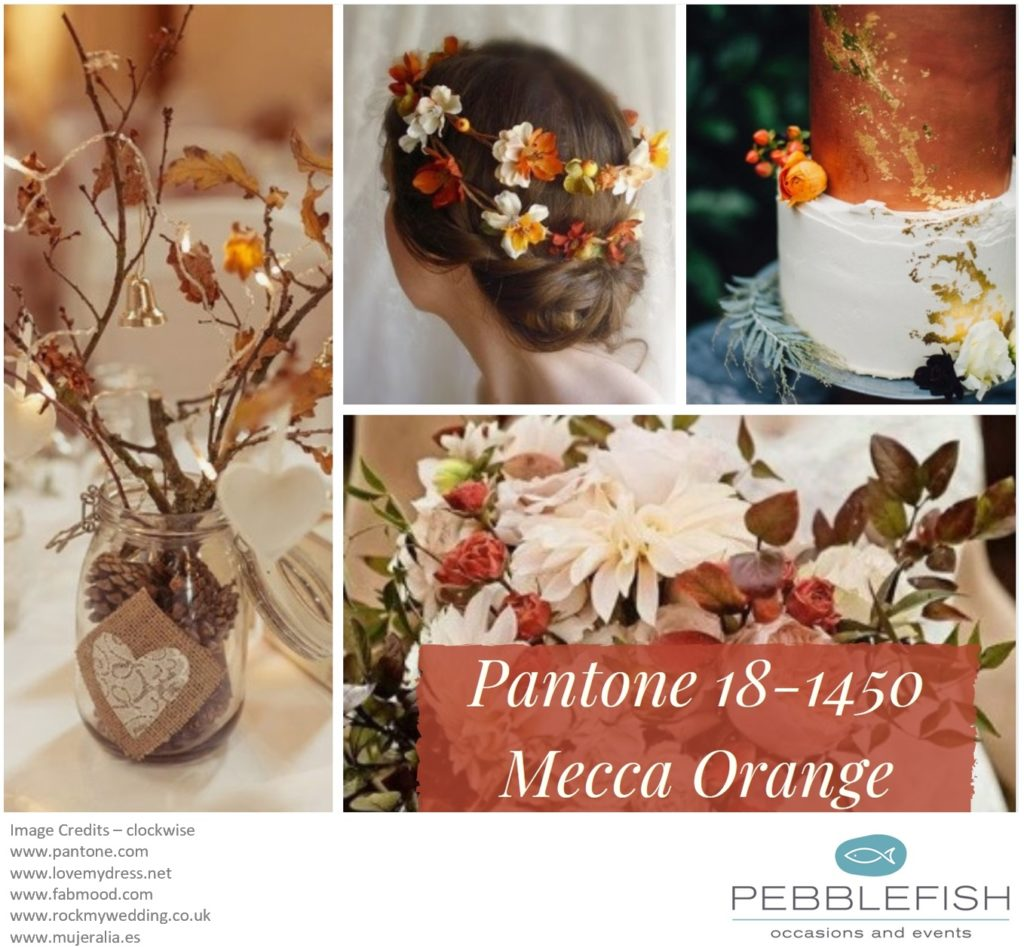 Picture Montage for pantone colour Mecca Orange