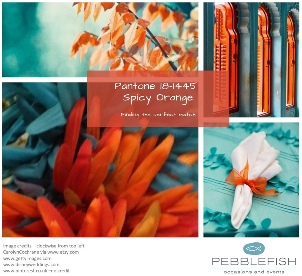Picture montage for pantone colour, Spicy Orange