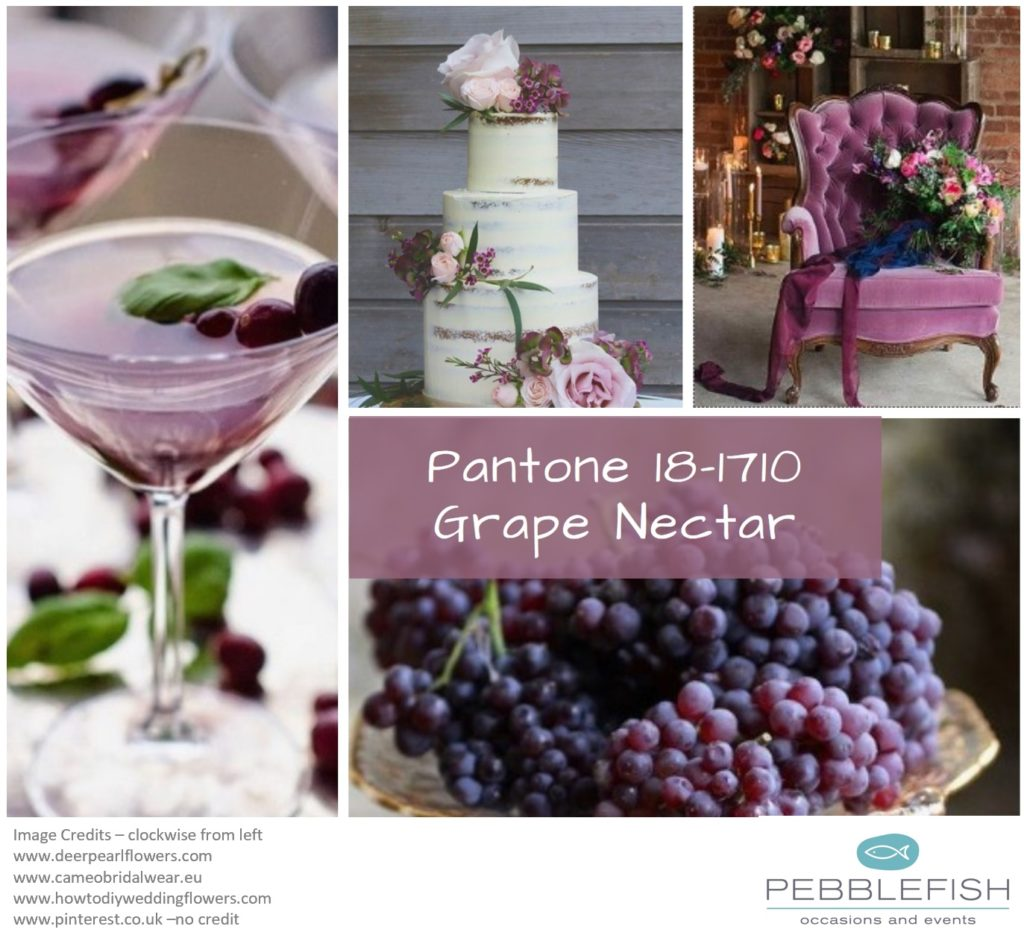 PIcture montage for pantone colour - Grape Nectat