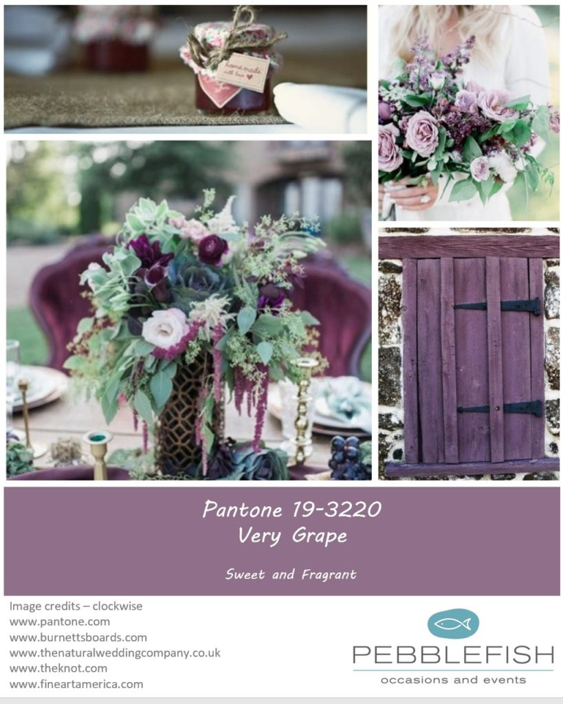 Icture montage for pantone colour Very grape