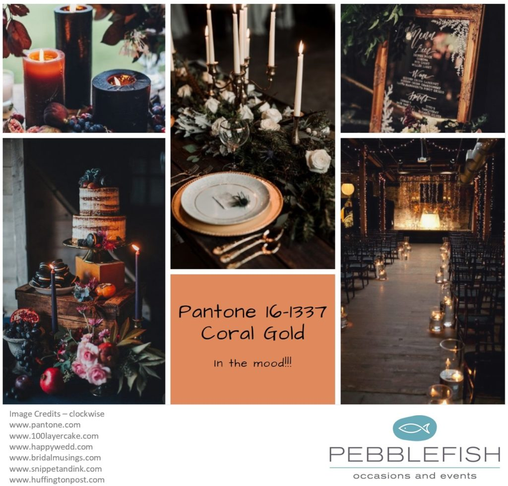 Picture montage for pantone colour Coral Gold