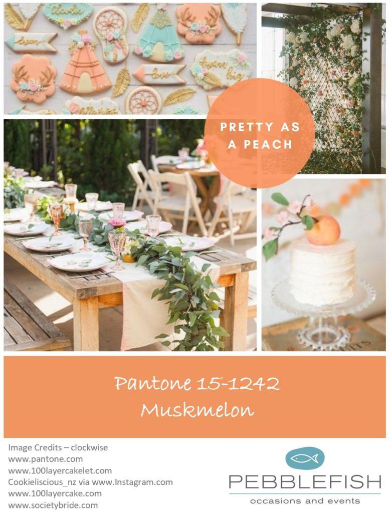 Picture Montage for the pantone colour Muskmelon