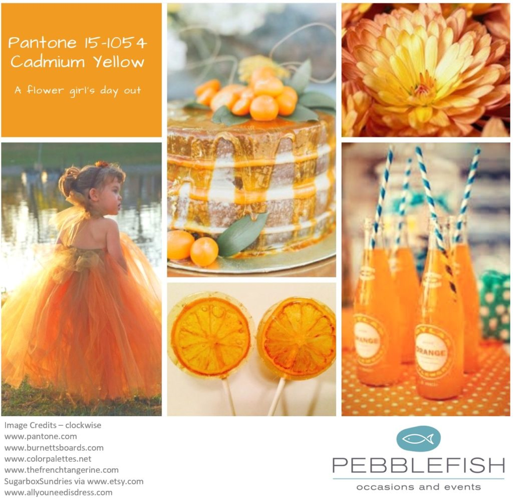 Picture Montage for Pantone colour Cadmium Yellow