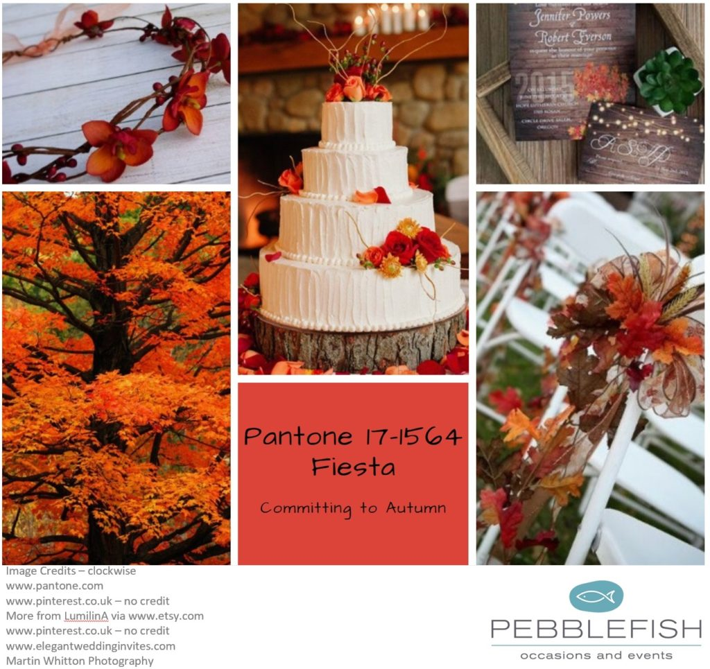 Picture montage for pantone colour of the day Fiesta