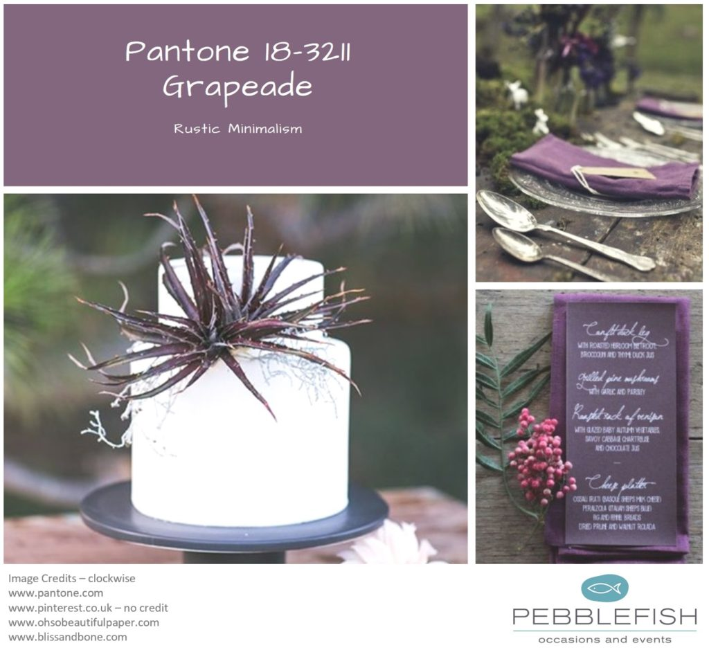 Picture montage for pantone colour of the day - Grapeade