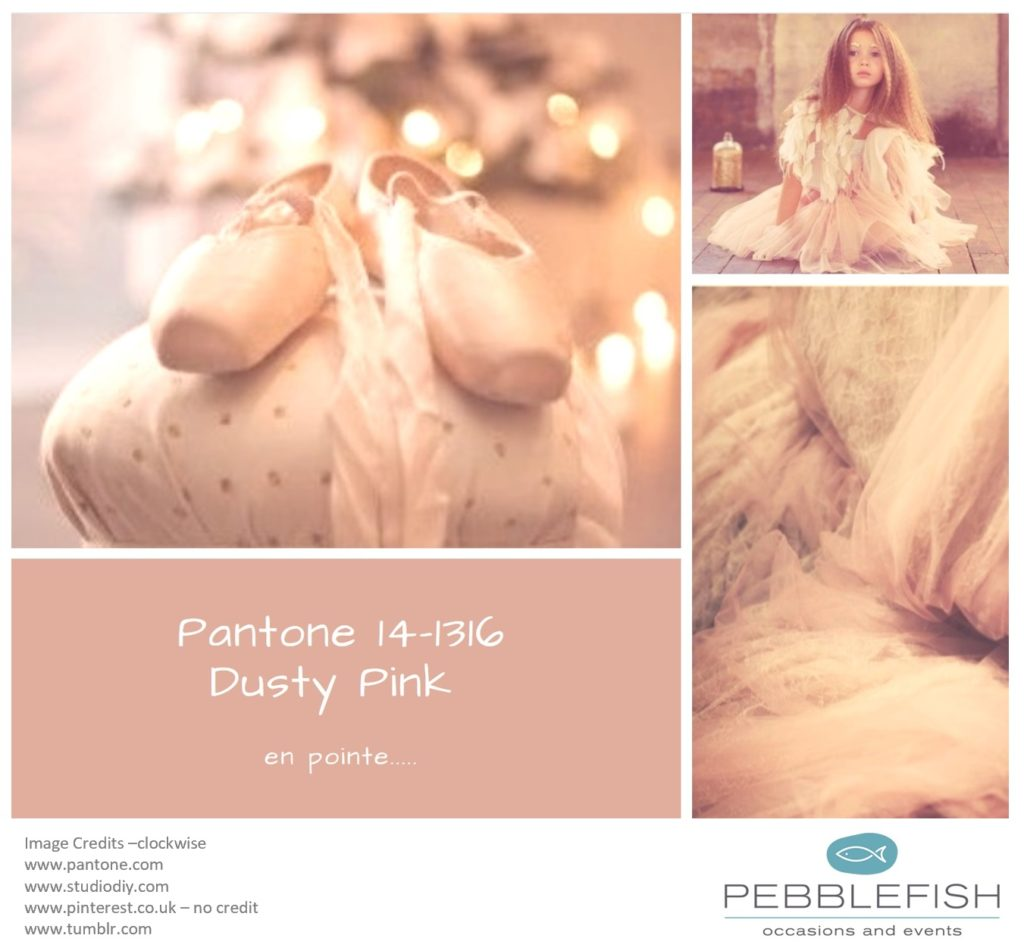 Picture montage for pantone colour Dusty Pink